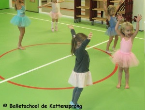 Preschool Ballet by Lisanne Geerts