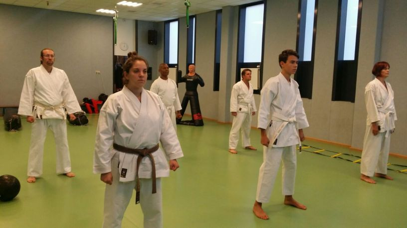 Shorin Ryu Karate Amsterdam